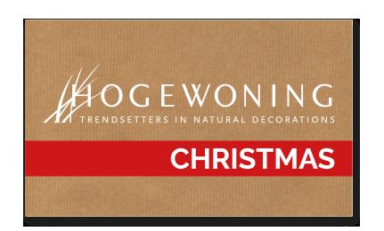 Hogewoning_Christmas
