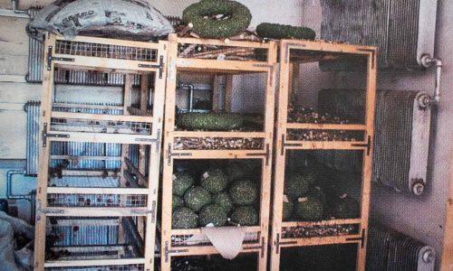 Der erste primitive Trocknungsraum in China 1986